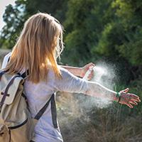 Spray anti-tiques pas cher