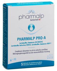 PRO-A Probiotika Kapseln