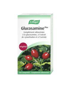 Glucosamine plus à l'extrait de cynorrhodon