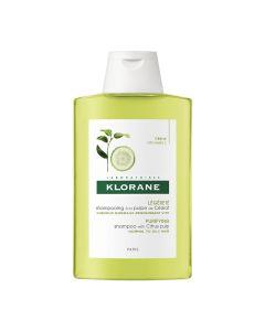 Zedrat Shampoo